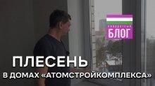 Плесень на окнах квартир в новостройках Екб